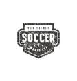 template emblem for soccer team vector image vector image