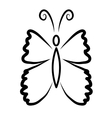 Butterfy vector image vector image
