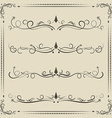 Calligraphic design elements curves and spirals vector image vector image