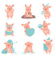 cute cheerful little pink pigs set funny piglets vector image