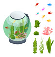 isometric goldfish in freshwater aquarium and vector image vector image