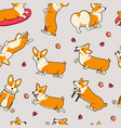 seamless pattern cute dogs breed welsh corgi vector image