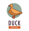 duck fresh meat commercial logo with domestic bird vector image vector image