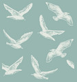 seamless hand drawn pattern with seagulls vector image vector image