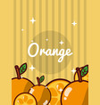 striped bright background fresh natural fruits vector image vector image