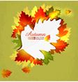 autumn6 vs vector image vector image