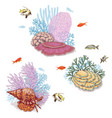 corals and swimming fishes vector image vector image