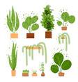 flat interior house and office plant set vector image