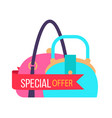 special offer for fashionable female handbags vector image vector image