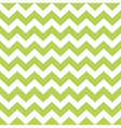 Zigzag pattern in wild green isolated on white vector image vector image