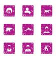 animal training icons set grunge style vector image
