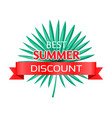 best summer discount logo with tropical palm leaf vector image vector image