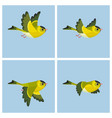 flying european siskin male animation sprite vector image vector image