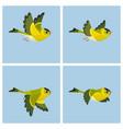 flying european siskin male animation sprite vector image vector image