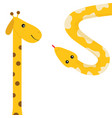 giraffe with round spot long neck yellow python vector image vector image