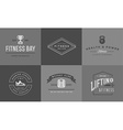 Set of Fitness Aerobics Gym Elements and Fitness vector image vector image