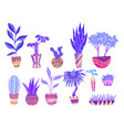 set of neon cartoon home flowers in pots with vector image vector image