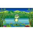 A frog standing above a water lily vector image vector image