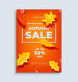 autumn sale banner background with fall vector image vector image