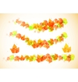 Collection beautiful colorful autumn leaves vector image vector image