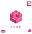 Cube isometric logo concept vector image vector image