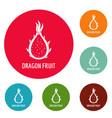 dragon fruit icons circle set vector image vector image