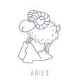 ram Aries vector image vector image