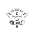 cricket club logotype vector image