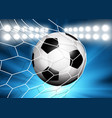 football or soccer ball flying into the goal vector image