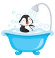 penguin bathing