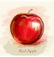sketch red apple in watercolor technique vector image