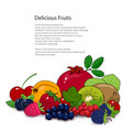 summer tropical fruits and berries isolated vector image vector image