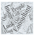 what calls for an image consultant Word Cloud vector image vector image