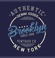 authentic brooklyn vintage vector image vector image