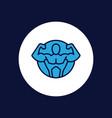 brawn icon sign symbol vector image vector image
