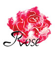 colorful logo with watercolor rose vector image vector image