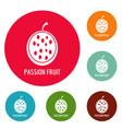 passion fruit icons circle set vector image