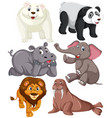 set of animal character vector image