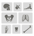 set of monochrome icons with human bones vector image