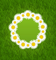 Spring freshness card with grass and camomiles vector image