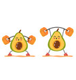 avocado character making exercise squat gym vector image
