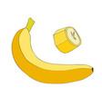 banana and a piece of banana vector image vector image