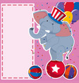 border template with elephant on the ball vector image vector image