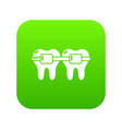 dental brace icon green vector image vector image
