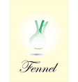 Fennel vector image vector image