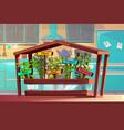 kitchen garden spices or herbs vector image