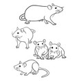 mouse line art vector image