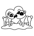 pandas couple over grass in black sections vector image vector image