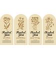 set labels for various herbal tea vector image