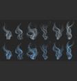 set smoke vector image vector image